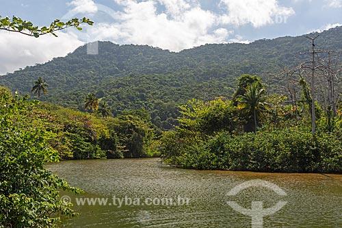 Vista de vegetação típica de Mata Atlântica e rio próximo à Praia de Dois Rios  - Angra dos Reis - Rio de Janeiro (RJ) - Brasil