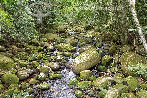 Poço do Soldado no Parque Estadual da Ilha Grande  - Angra dos Reis - Rio de Janeiro (RJ) - Brasil