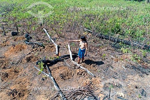 Foto feita com drone de mulher indígena da aldeia Aiha da tribo Kalapalo colhendo mandioca - ACRÉSCIMO DE 100% SOBRE O VALOR DE TABELA  - Querência - Mato Grosso (MT) - Brasil