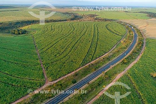 Foto feita com drone de trecho da Rodovia Transbrasiliana (BR-153) - também conhecida como Rodovia Belém-Brasília e Rodovia Bernardo Sayão - em meio à canaviais  - Comendador Gomes - Minas Gerais (MG) - Brasil