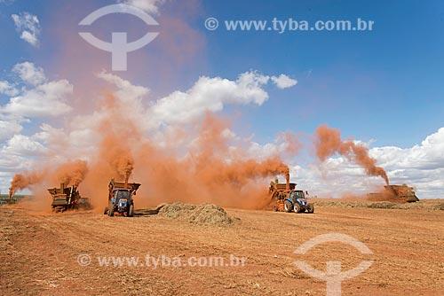 Colheita mecanizada de semente de capim  - Uberlândia - Minas Gerais (MG) - Brasil