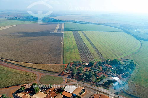 Foto feita com drone de plantação de feijão irrigada com pivô central  - Guaíra - São Paulo (SP) - Brasil