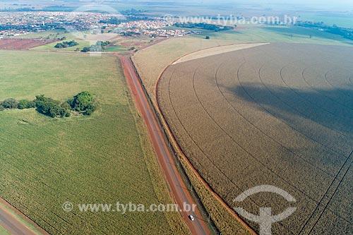Foto feita com drone de canavial - à esquerda - com plantação de milho irrigada com pivô central  - Guaíra - São Paulo (SP) - Brasil