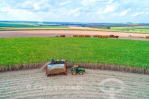 Foto feita com drone de colheita mecanizada de cana-de-açúcar  - Jaboticabal - São Paulo (SP) - Brasil