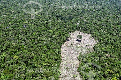 Foto aérea de área desmatada em vegetação típica da amazônia próximo à cidade de Manacapuru  - Manacapuru - Amazonas (AM) - Brasil