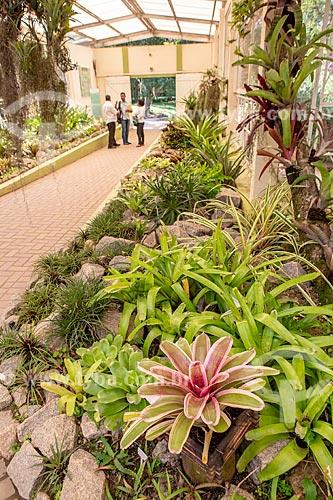 Interior do bromeliário do Jardim Botânico do Rio de Janeiro  - Rio de Janeiro - Rio de Janeiro (RJ) - Brasil