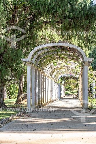 Pérgula no Jardim Botânico do Rio de Janeiro  - Rio de Janeiro - Rio de Janeiro (RJ) - Brasil