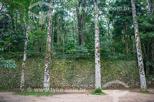 Muro de pedras no Parque Nacional da Tijuca  - Rio de Janeiro - Rio de Janeiro (RJ) - Brasil
