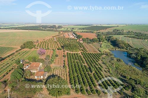 Foto feita com drone de plantação de legumes, pomar de limão e canavial ao fundo  - Taquaritinga - São Paulo (SP) - Brasil