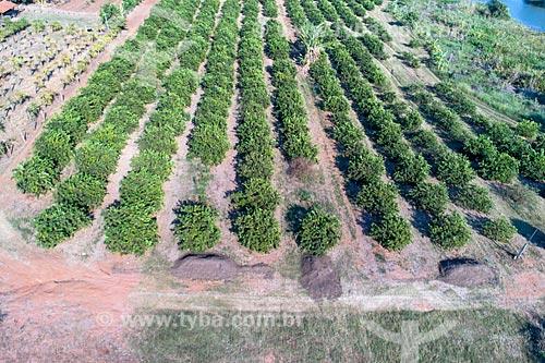 Foto feita com drone de pomar de limão e adubo orgânico  - Taquaritinga - São Paulo (SP) - Brasil