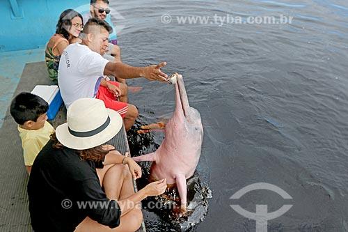 Homem alimentando boto-cor-de-rosa (Inia geoffrensis) - flutuante dos botos no Rio Negro  - Novo Airão - Amazonas (AM) - Brasil