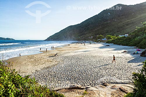 Orla da Praia da Solidão  - Florianópolis - Santa Catarina (SC) - Brasil
