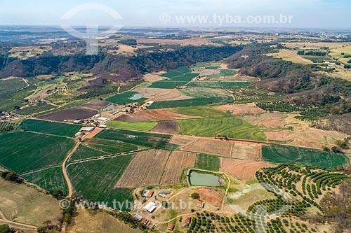 Foto feita com drone de plantação de cebola (Allium cepa) na Serra de Jaboticabal  - Monte Alto - São Paulo (SP) - Brasil