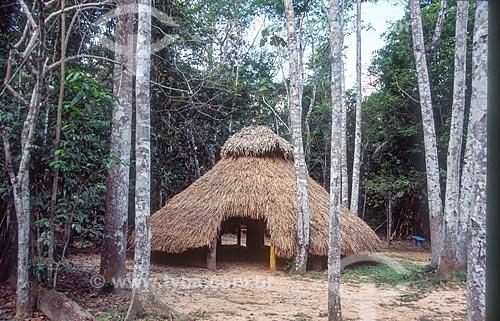 Oca de Iricurí no Parque Ambiental Chico Mendes - década de 2000  - Rio Branco - Acre (AC) - Brasil