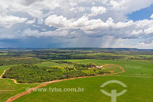 Foto feita com drone de plantação de soja durante chuva com a Serra do Caiapó ao fundo  - Caiapônia - Goiás (GO) - Brasil