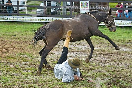 Ginete caindo do cavalo durante rodeio de gineteada  - Canela - Rio Grande do Sul (RS) - Brasil