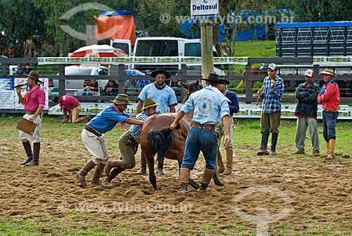Ginetes levantando cavalo durante rodeio de gineteada  - Canela - Rio Grande do Sul (RS) - Brasil