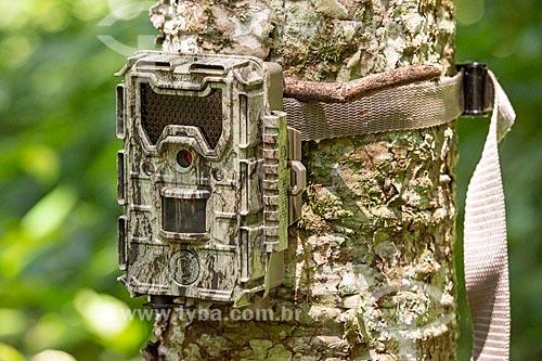 Detalhe de armadilha fotográfica próximo ao Parque Nacional do Iguaçu  - Foz do Iguaçu - Paraná (PR) - Brasil
