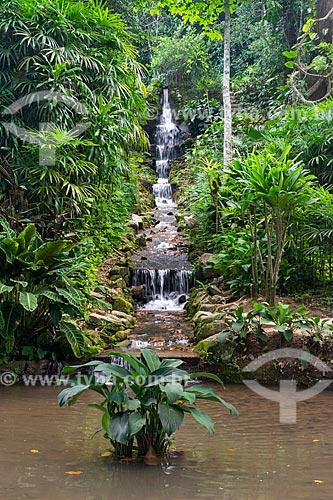 Queda dágua no Jardim Botânico do Rio de Janeiro  - Rio de Janeiro - Rio de Janeiro (RJ) - Brasil