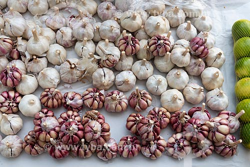 Detalhe de alho (Allium sativum) à venda na Feira livre da Praça Nicarágua  - Rio de Janeiro - Rio de Janeiro (RJ) - Brasil