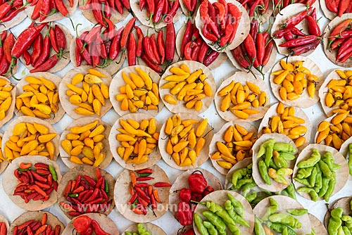 Detalhe de variedades de pimenta à venda na Feira livre da Praça Nicarágua  - Rio de Janeiro - Rio de Janeiro (RJ) - Brasil