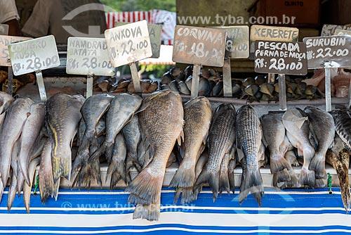 Detalhe de peixes à venda na Feira livre da Praça Nicarágua  - Rio de Janeiro - Rio de Janeiro (RJ) - Brasil