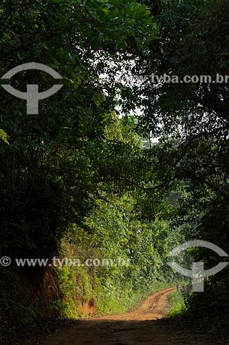 Estrada de terra na zona rural da cidade de Guarani em meio à sombra  - Guarani - Minas Gerais (MG) - Brasil