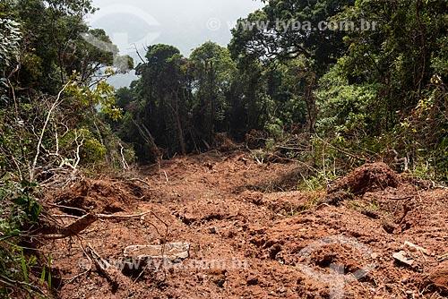 Deslizamento de terra no Parque Nacional da Tijuca  - Rio de Janeiro - Rio de Janeiro (RJ) - Brasil