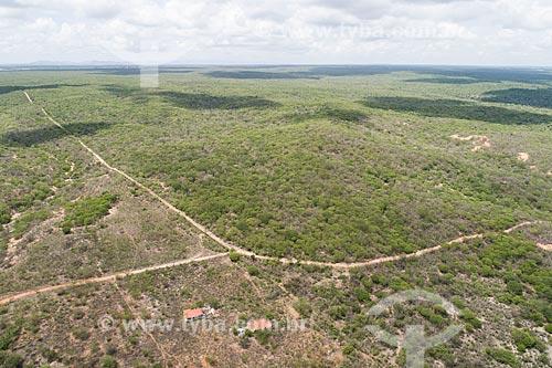 Foto feita com drone da Floresta Nacional do Açu  - Açu - Rio Grande do Norte (RN) - Brasil