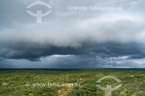 Foto feita com drone de chuva no sertão da paraíba  - Pombal - Paraíba (PB) - Brasil