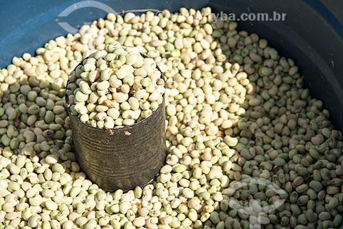 Feijão de corda (Vigna unguiculata) à venda em feira livre na cidade de Sousa  - Sousa - Paraíba (PB) - Brasil