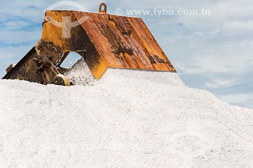 Detalhe de descarga durante a extração de sal em tanques de evaporação  - Macau - Rio Grande do Norte (RN) - Brasil
