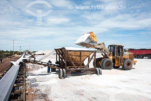 Carregadeira despejando sal em esteira durante extração em tanques de evaporação  - Macau - Rio Grande do Norte (RN) - Brasil