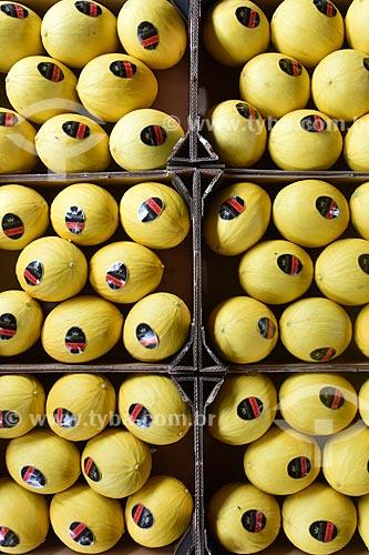 Detalhe de melões (Cucumis melo) em galpão de seleção e embalagem  - Mossoró - Rio Grande do Norte (RN) - Brasil