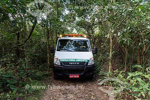 Transporte de antas (Tapirus terrestris) do projeto de reintrodução de antas do Jardim Zoológico do Rio de Janeiro para a Reserva Ecológica de Guapiaçu  - Cachoeiras de Macacu - Rio de Janeiro (RJ) - Brasil