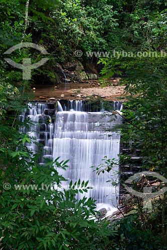 Cachoeira do Quebra no Parque Nacional da Tijuca  - Rio de Janeiro - Rio de Janeiro (RJ) - Brasil