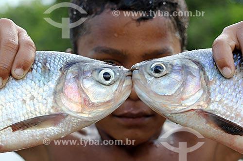 Criança ribeirinha segurando peixes na Comunidade Ribeirinha do Bom Jesus na Reserva de Desenvolvimento Sustentável de Uacari  - Carauari - Amazonas (AM) - Brasil