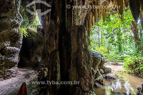 Estalactites no interior de caverna do Parque Henrique Lage - mais conhecido como Parque Lage  - Rio de Janeiro - Rio de Janeiro (RJ) - Brasil