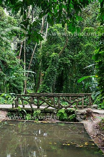 Ponte sobre rio no Parque Nacional da Tijuca  - Rio de Janeiro - Rio de Janeiro (RJ) - Brasil
