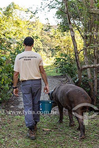 Trabalhador rural e anta (Tapirus terrestris) com colar GPS para monitoramento animal na Reserva Ecológica de Guapiaçu  - Cachoeiras de Macacu - Rio de Janeiro (RJ) - Brasil