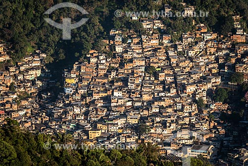 Vista do amanhecer no Morro do Borel a partir do Morro do Sumaré  - Rio de Janeiro - Rio de Janeiro (RJ) - Brasil