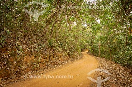 Estrada de terra na zona rural da cidade de Guarani  - Guarani - Minas Gerais (MG) - Brasil