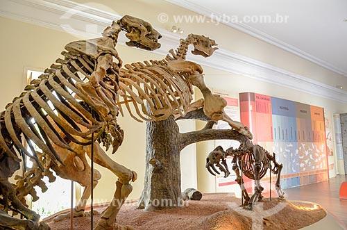 Réplica do Paraphysornis brasiliensis, ave carnívora gigante do período Cenozóico brasileiro em exibição no Museu Nacional - antigo Paço de São Cristóvão  - Rio de Janeiro - Rio de Janeiro (RJ) - Brasil