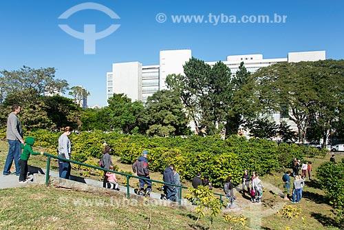 Colheita urbana de café no Instituto Biológico  - São Paulo - São Paulo (SP) - Brasil