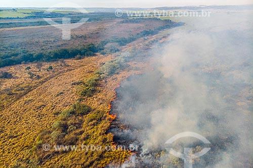Foto feita com drone de queimada em pasto no interior paulista  - Torrinha - São Paulo (SP) - Brasil