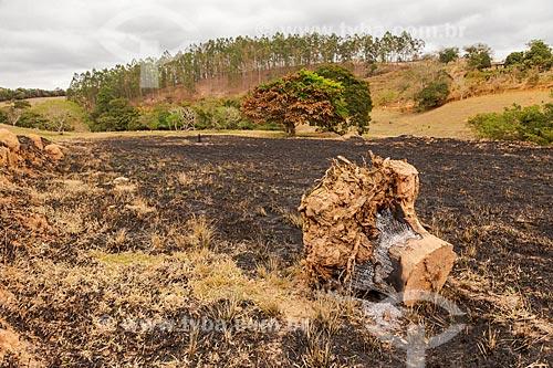 Terreno urbano queimado legalmente  - Guarani - Minas Gerais (MG) - Brasil
