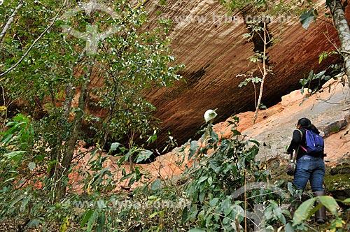 Sítio Arqueológico Gruta do Pitoco - na Serra do Bom Sucesso  - Alcinópolis - Mato Grosso do Sul (MS) - Brasil