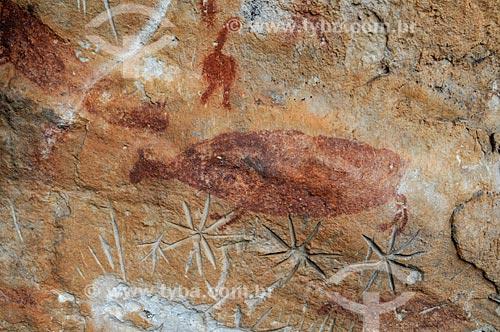 Detalhe de pinturas rupestres e petróglifos - Sítio Arqueológico Pata da Onça - na Serra do Bom Jardim  - Alcinópolis - Mato Grosso do Sul (MS) - Brasil