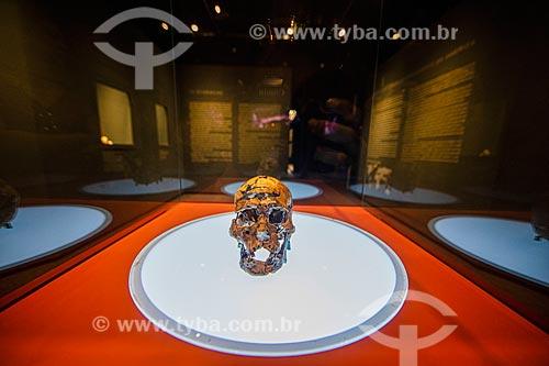 Crânio da Zuzu - Museu do Homem Americano  - São Raimundo Nonato - Piauí (PI) - Brasil