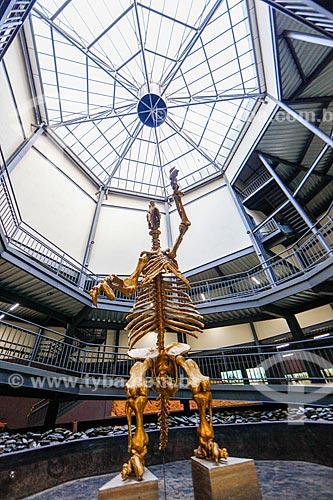 Réplica de um animal da mega fauna - Preguiça-gigante - Museu da Natureza  - Coronel José Dias - Piauí (PI) - Brasil
